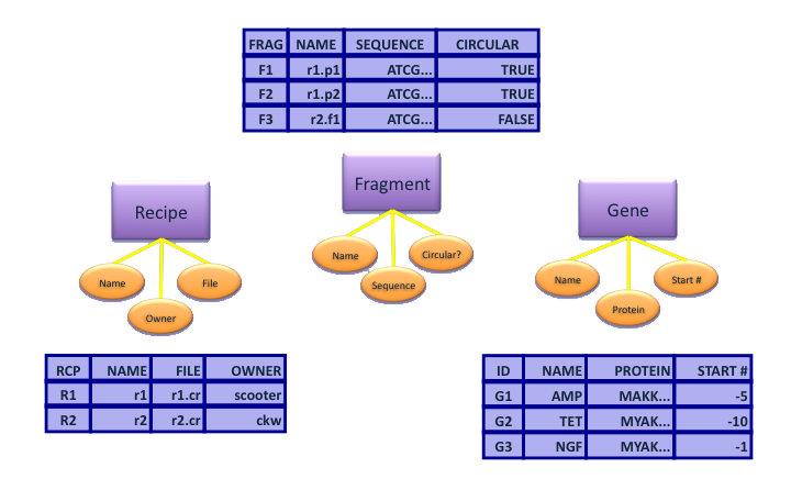 primary key relational database,does primary key to access,primary key null,primary key rdbms,primary key microsoft access,primary key sql,sql relational database,normalization relational database,referential integrity relational database,