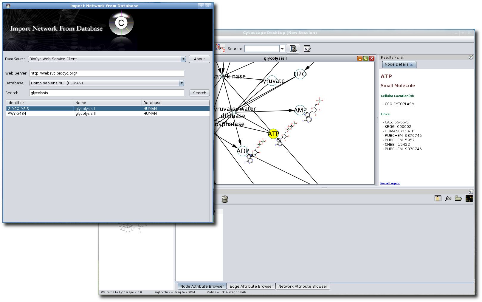 bioCycPlugin: Cytoscape plugin for loading networks from Pathway