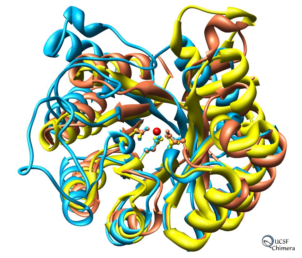 download Computational Methods for Genetics